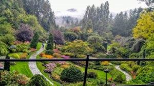 Floral Landscapes