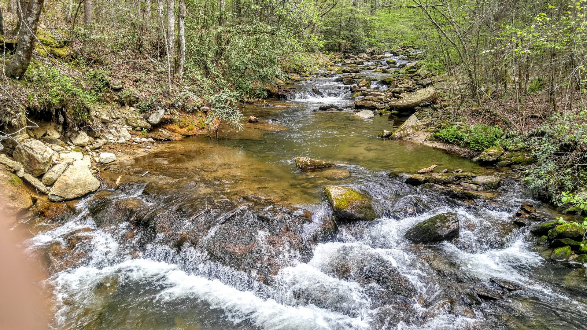 North Carolina stream on Lake Jocassee