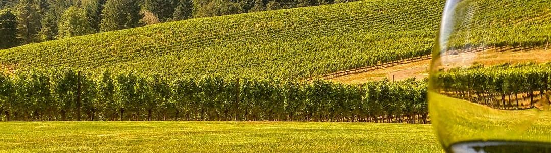 Tualitin Valley Vineyard